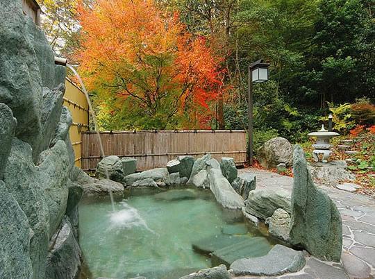 大歩危・祖谷周辺の温泉の写真