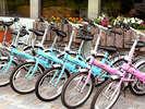 【レンタサイクリング】清々しい諏訪湖のサイクリングロードをお楽しみいただけます!