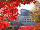 紅葉の時期には庭園や近隣の山々が赤く染まり皆様をお迎えいたします。