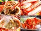 北洋産カニと間人ガニのミックスコースです。大きな蟹を1.2杯使用したボリューム満点のプランです。