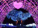 マザー牧場★キラキラファーム★~星降るまきばのファンタジー~光と音で表現するイルミネーションショー