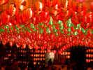 10,000灯のランタンと世界・日本全国のうまいものが大集合!