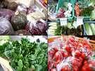 【食へのこだわり:野菜】地元の農家の方々が大切に育てた「摘みたて野菜」をお出ししております。