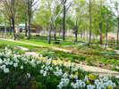 今年は「北海道ガーデンショー」開催!大雪・森のガーデン