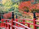 太鼓橋と紅葉