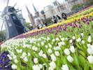 【チューリップ祭】100万本のチューリップ祭が春を演出