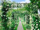 【バラ祭】パレスハウステンボスの宮殿前を彩るおとぎ話のような非日常的な空間