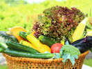 ホテル直営農園の美味しいお野菜をどうぞ。