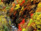 アエルから車で20分!秋の五色渓谷は紅葉がとてもキレイ♪