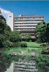 静岡の繁華街の中のオアシス庭園を望むホテル