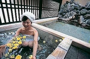 水のお風呂!温→冷→温で自律神経のお助けの役立^^【夏季は市場にお花の入荷が無いです】