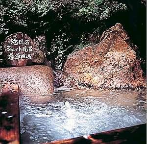 久美浜温泉湯元館 薬草風呂