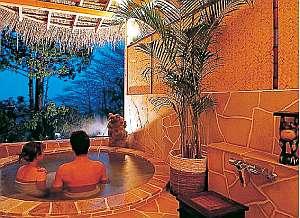 美肌湯・天城山系アルカリ単純温泉をプライベートに楽しんで。