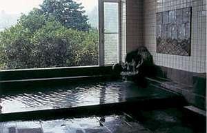 湯量たっぷりの温泉 内湯「潮騒」