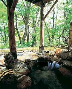 木立の中に浸かるような貸切露天。眼下には平湯川の流れ
