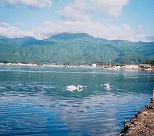 宿からの加茂湖と金北山