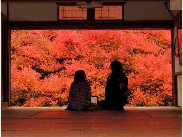 安国禅寺の紅葉までは徒歩10分です。