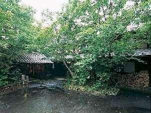 【外観】木々の生い茂る玄関エントランス