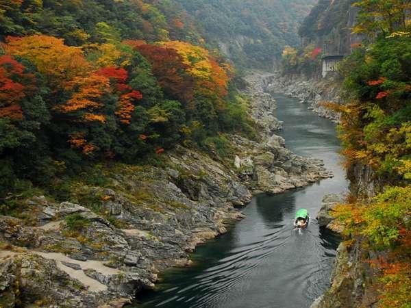 紅葉シーズンの大歩危峡を観光するのにも最適です。