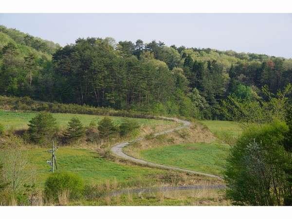 敷地内の林道ではマウンテンバイクやシクロクロスなどもできます。
