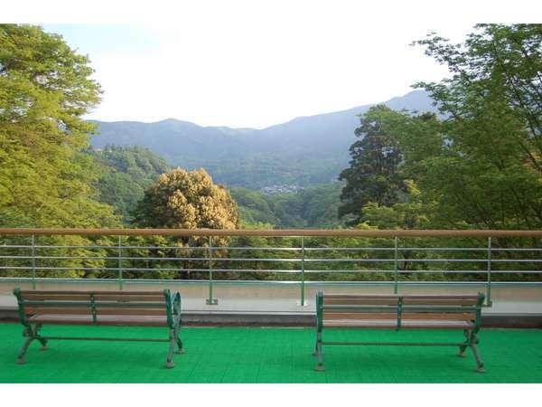 1階テラスより、早朝の新緑風景