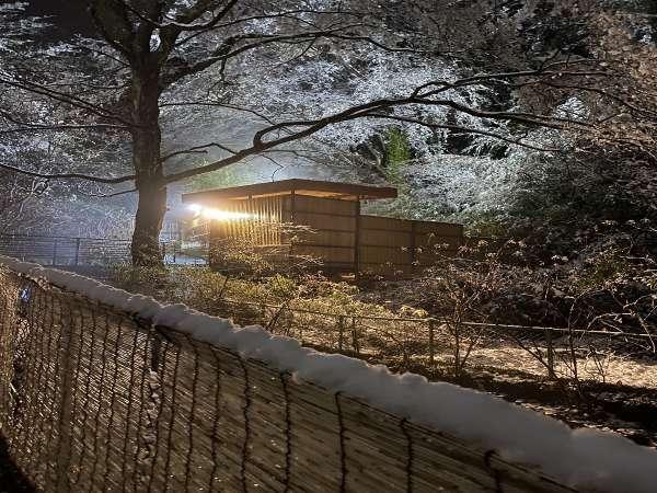 雪の中の露天風呂(露天風呂へ行く道)