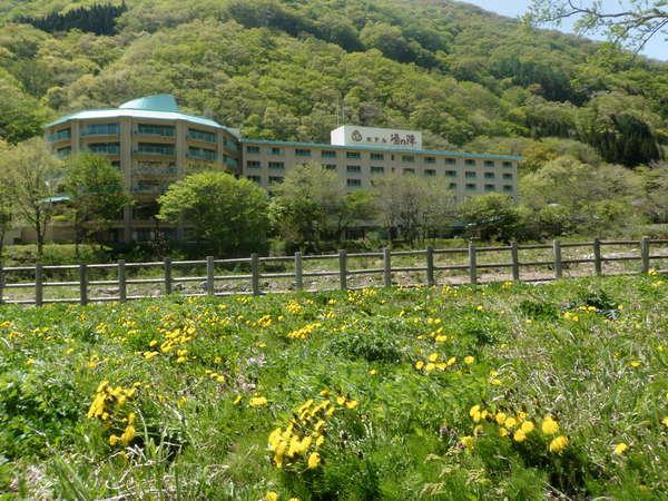 春のホテル湯の陣