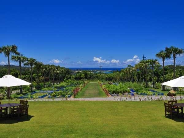 【ザ・ガーデン】約25000㎡もの敷地に生い茂る南国の果樹や花々をお楽しみ頂けます。