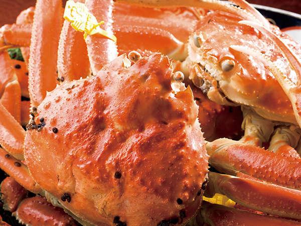 700g級の立派な蟹がどど~んとメイン!サイズも大きくなりますが、旨さももちろん倍増です!!