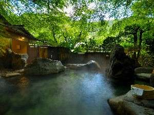 川のせせらぎや滝の音をだけを聞きながら、自然の中で日頃の疲れを癒してみては…
