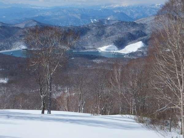 ブナの森が美しいたんばらスキーパーク