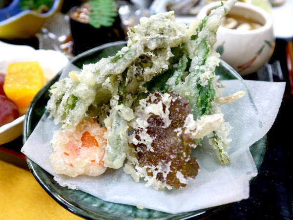 *【夕食一例】山菜の天ぷらは主人と女将で採ってきたもの!