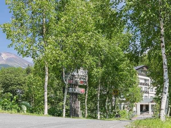旭岳と新緑の湧駒荘