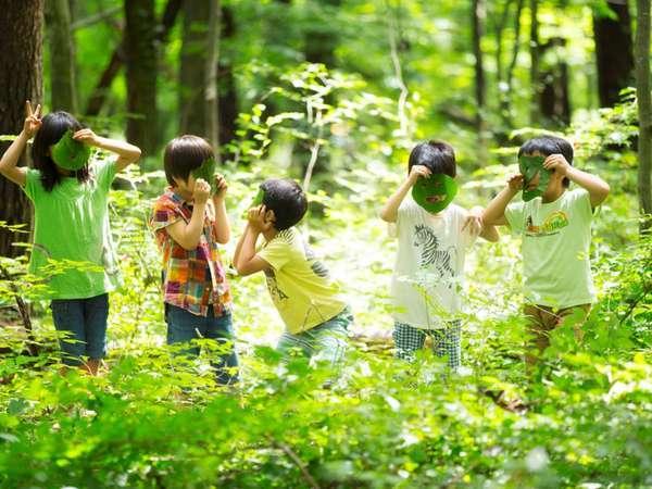 森いく 〜虫探しに出かけよう〜