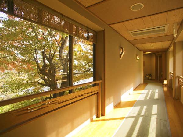 当館は全階畳敷き。冬はあたたかく夏はべたつかない『日本の機能美』に触れてください