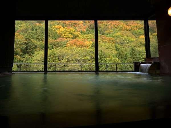 【遊月の湯 大浴場】ダイレクトに広がる山麓の風景。