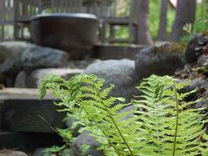 あくまで自然な雰囲気を大切にしたハーブガーデン