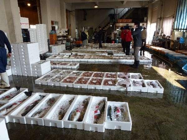 *セリ権のある当館は寺泊漁業協同組合にセリに行っております!