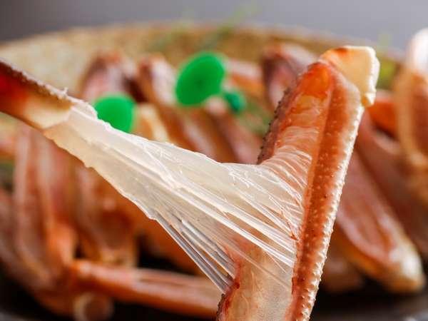 冬の赤い宝石「松葉ガニ」料理長目利きの蟹は甘みが違います