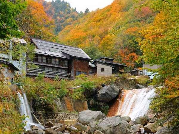 *秋の外観。滝と紅葉のコントラストをお楽しみいただけます。