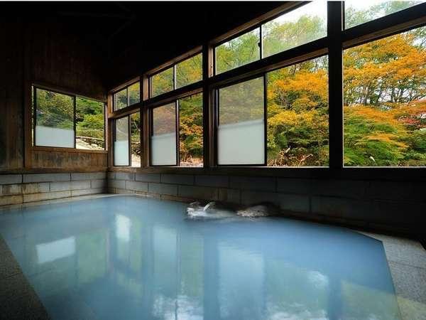 混浴大浴場【秋】白濁する温泉に入りながら、窓の外に広がる紅葉を眺める贅沢!女性専用内風呂もあり