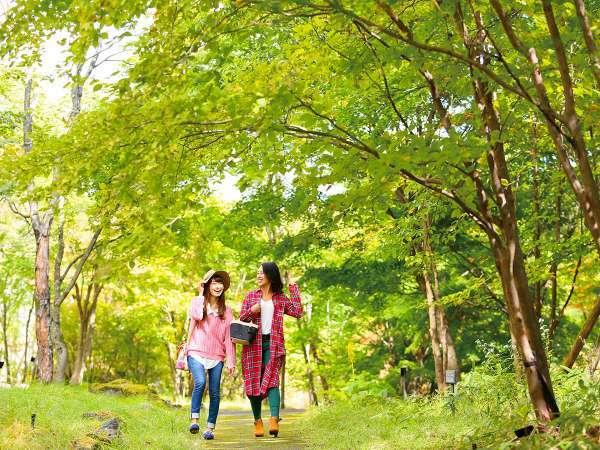 館内併設の散策路/四季折々の山の表情をぜひお楽しみください。