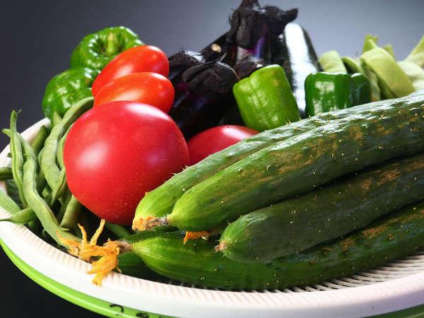 【戸狩温泉 フローラ戸狩】あまーい自家製野菜と米、すべてうちの畑産!おもてなしの民宿