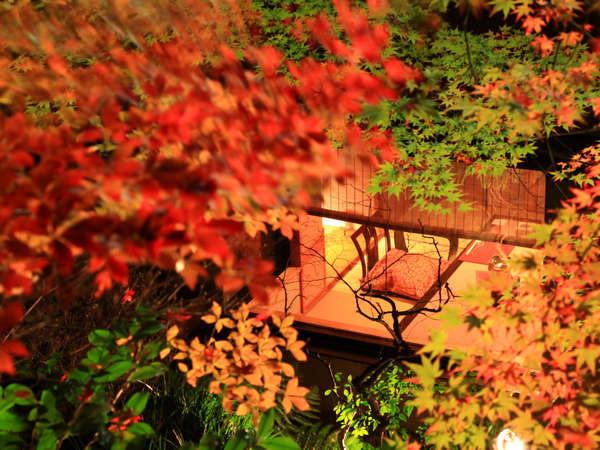 美しい自然に囲まれた南飛騨の地で、四季折々の景色をお楽しみください。