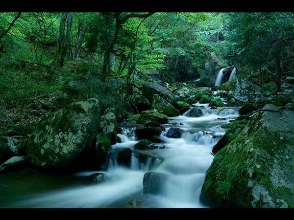 滝川渓谷「福島の遊歩道50選」に。全長3kmの散策路内に見事な48滝が連続する県内でも珍しい秘境。入場\200