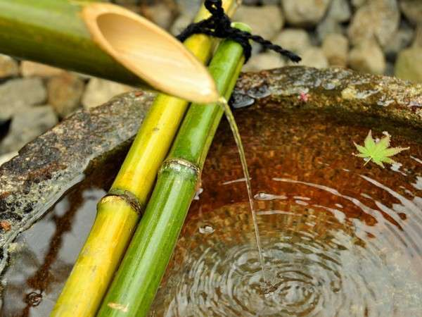 玄関前の蹲へ滴り落ちる水の音色は穏やかな気持ちにさせます。