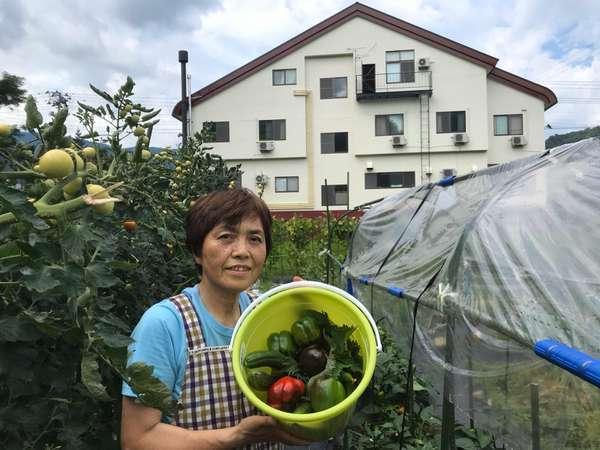 女将さんと一緒に野菜を収穫して食べよう!