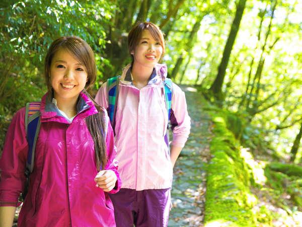 女性でも歩きやすいと人気の【白谷雲水峡♪】~幻想的な世界に包まれ、不思議な出会いをお楽しみ下さい~