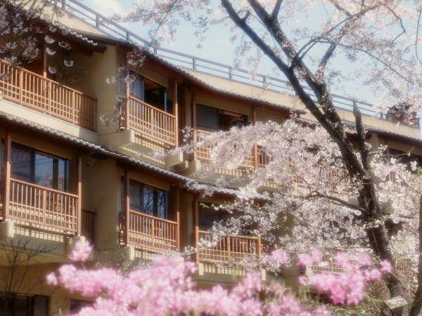 『外観』(桜が満開の春の風景)