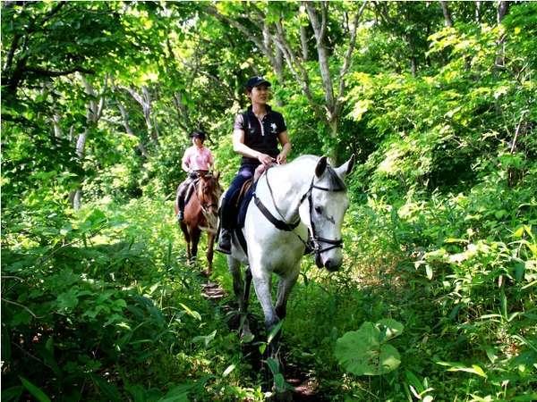 【夏】乗馬トレッキング 馬と一緒に森を散策
